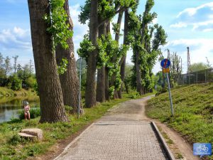 Trasa A1 u Radotína směr Černošice (2015)